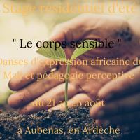 Stage résidentiel d'été Le corps sensible et sa danse (1)[21325]